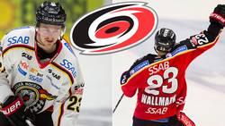 """Wallmark: """"Blir det AHL så kör jag där"""""""