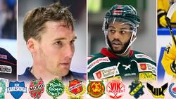 Rankning: Bästa värvningarna i hockeyallsvenskan